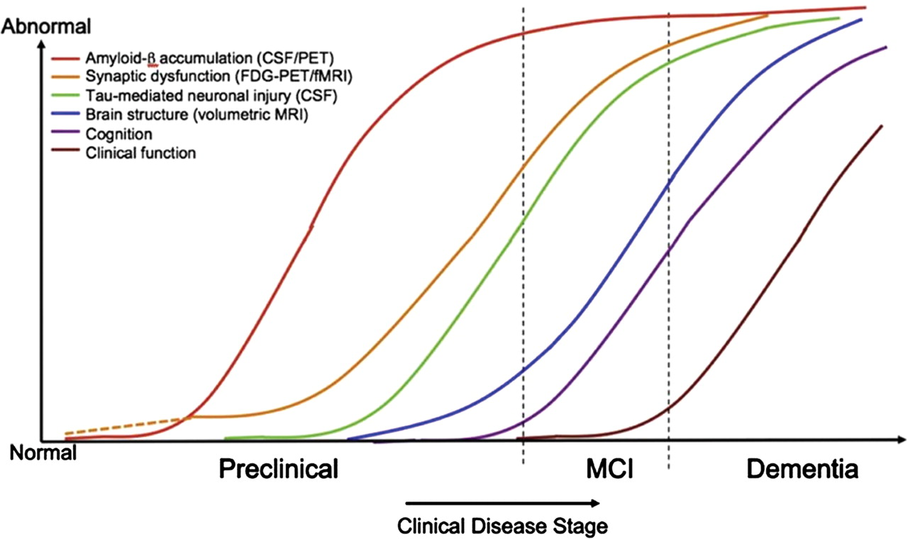 figure 5 model of how the different stages of alzheimers disease