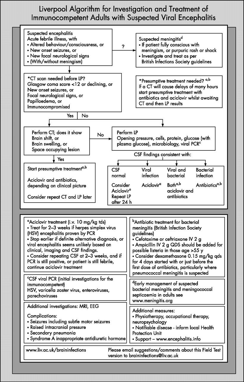 Viral encephalitis: a clinician's guide | Practical Neurology