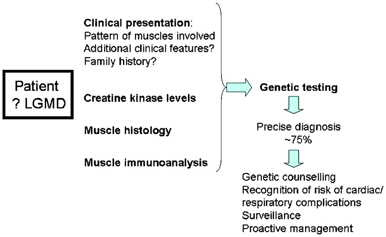 Communication on this topic: How to Diagnose Muscular Dystrophy, how-to-diagnose-muscular-dystrophy/