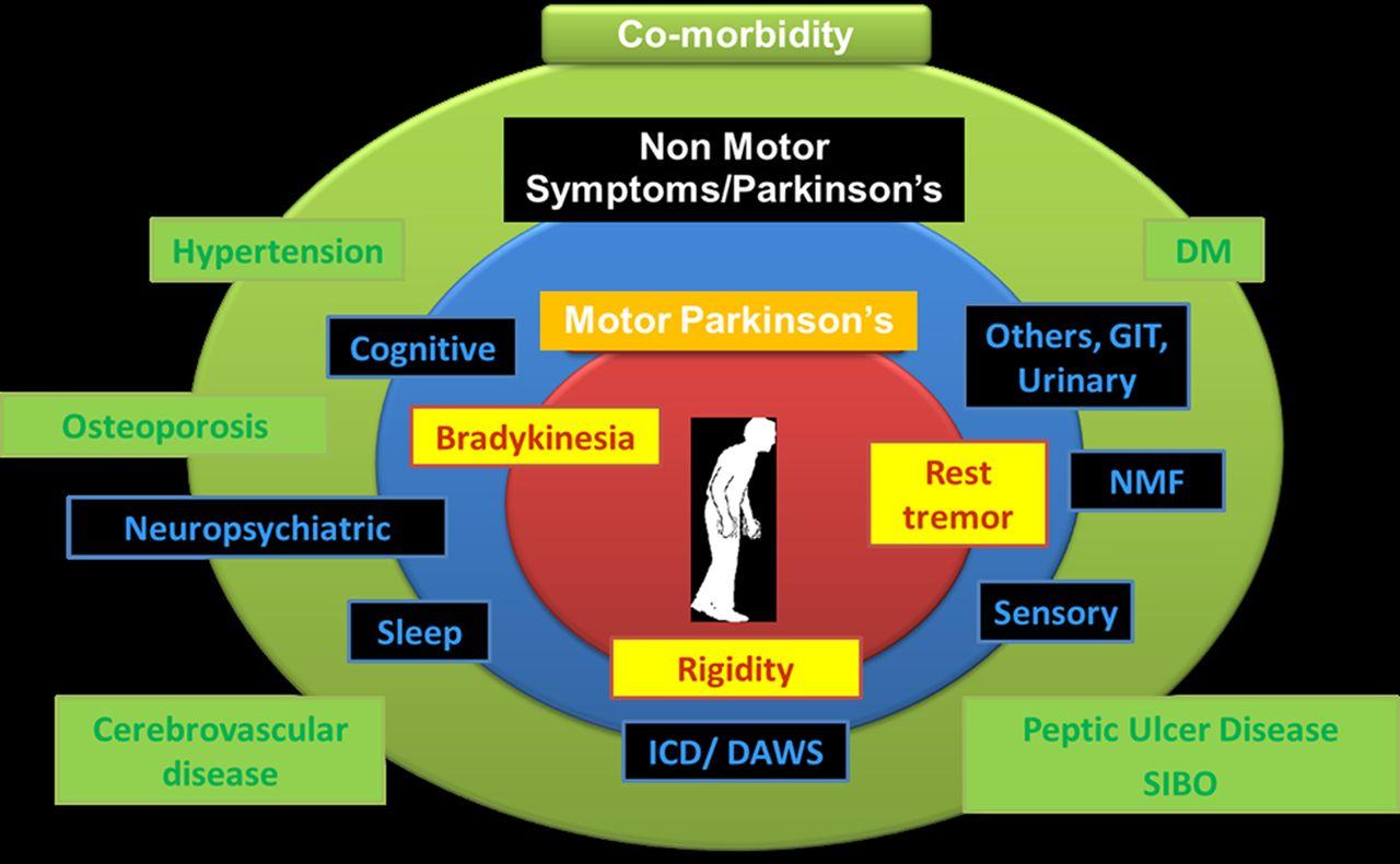 Parkinsons Disease Progression >> Non-motor Parkinson's: integral to motor Parkinson's, yet often neglected | Practical Neurology