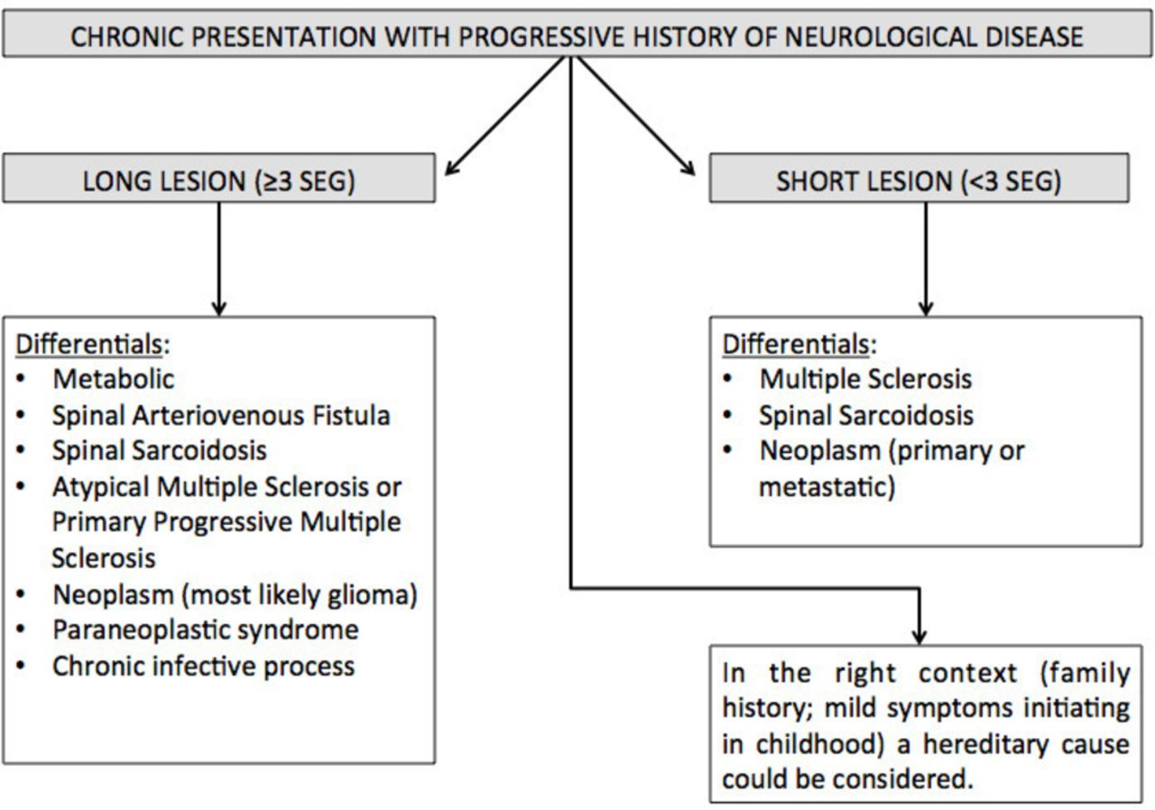 A Practical Approach To The Diagnosis Of Spinal Cord Lesions