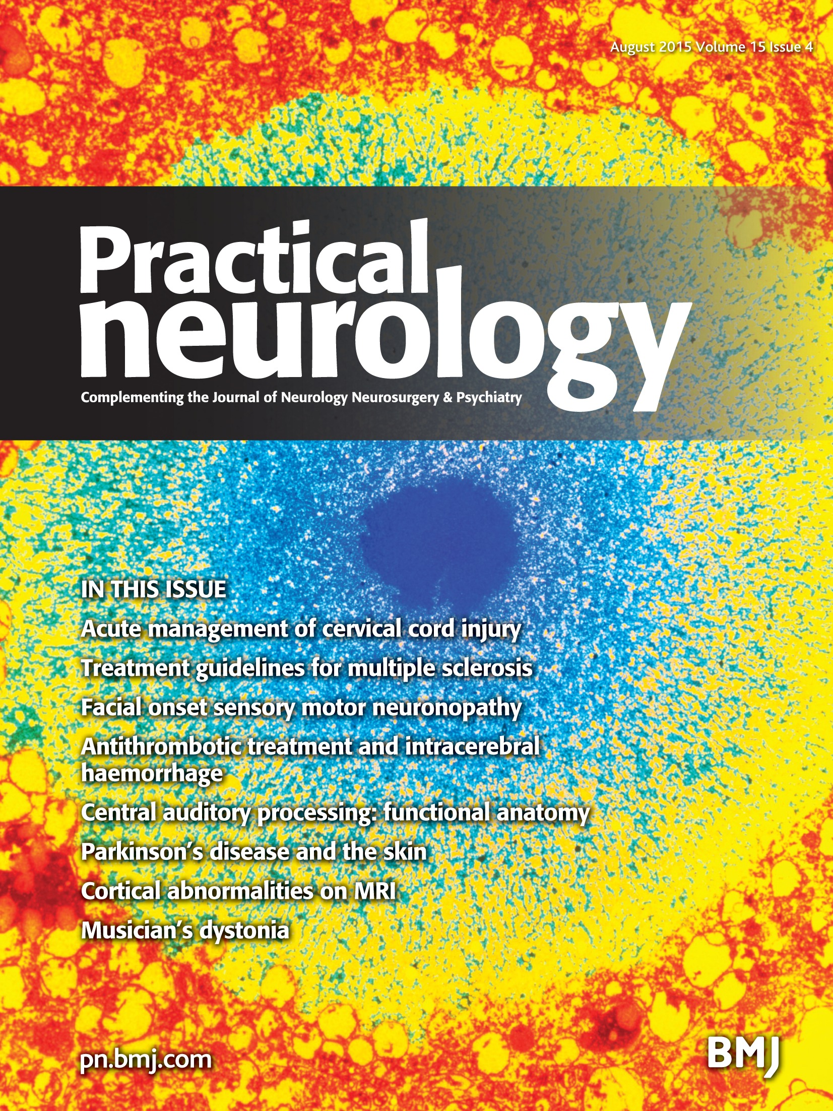 The functional anatomy of central auditory processing | Practical ...