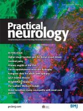 Practical Neurology: 16 (3)